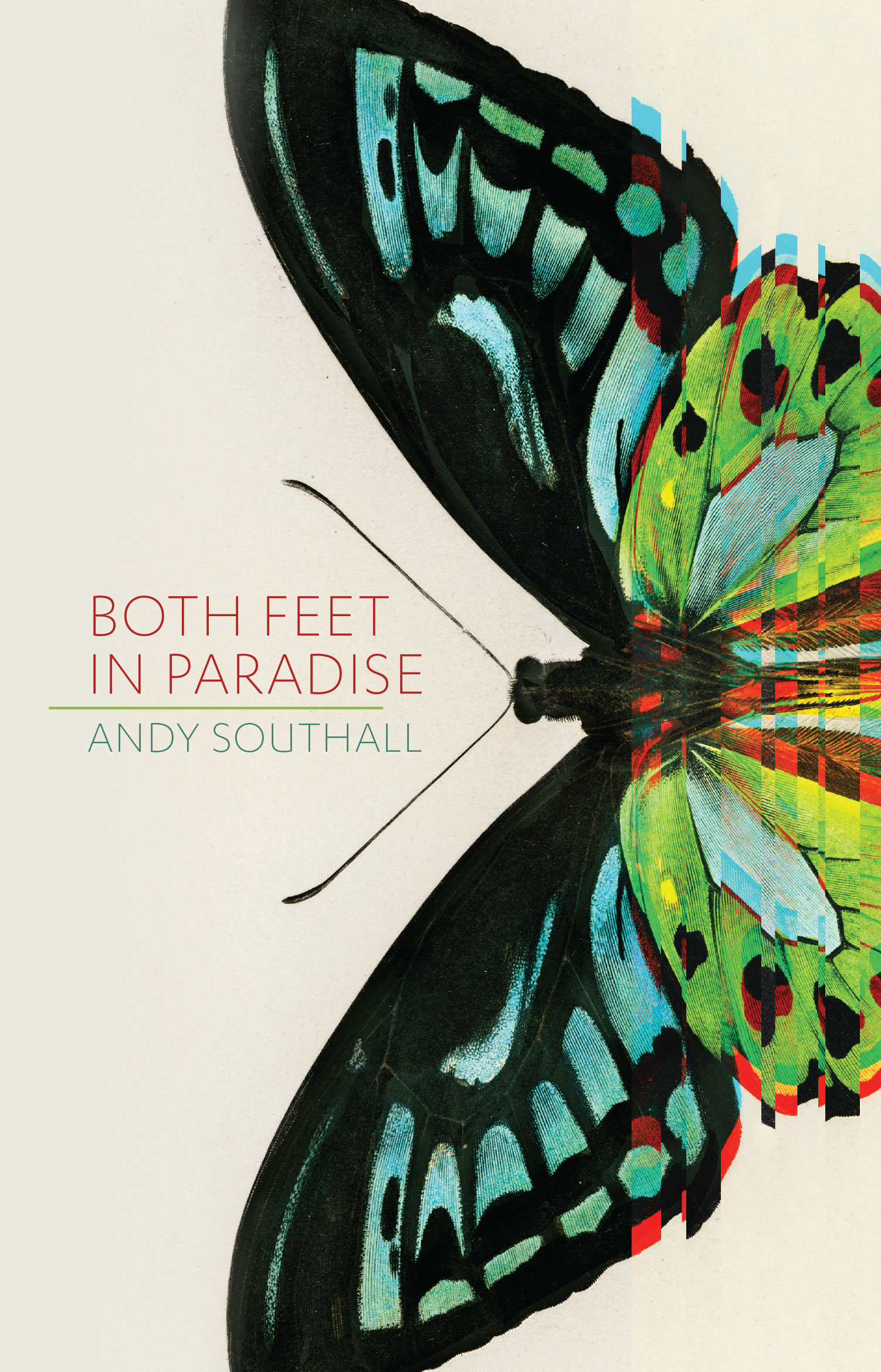 Both-feet-in-paradise-web-cover